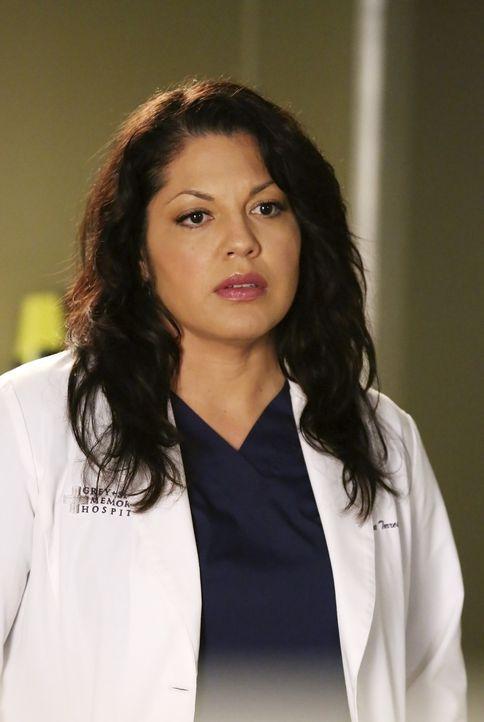 Seit dem tragischen Unfall eines Patienten in ihrem eigenen Labor plagen Callie (Sara Ramirez) schreckliche Selbstzweifel. Wird die Ärztin aufgeben? - Bildquelle: ABC Studios
