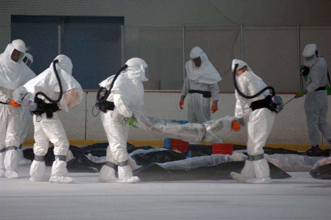 Der Erreger H3N7 vervielfältigt sich mit großer Geschwindigkeit im menschlichen Organismus. Kurz nachdem erste Symptome auftreten, sterben die Erk... - Bildquelle: 2006 RHI Entertainment Distribution, LLC