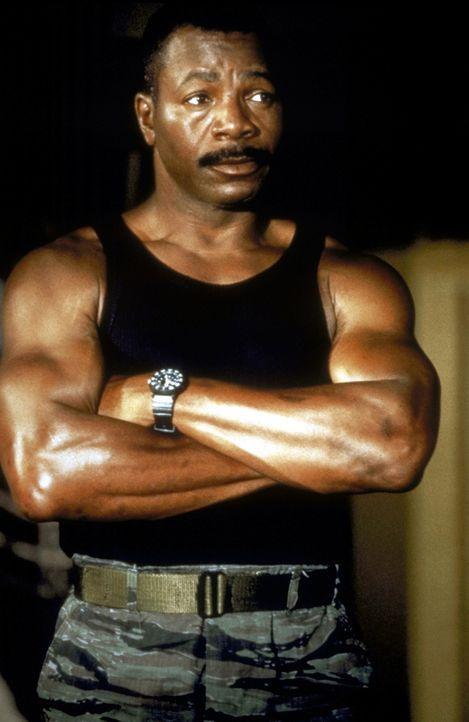 Roy Brown (Carl Weathers) setzt alles daran, die Geiseln unversehrt befreien zu können ... - Bildquelle: Alliance Entertainment