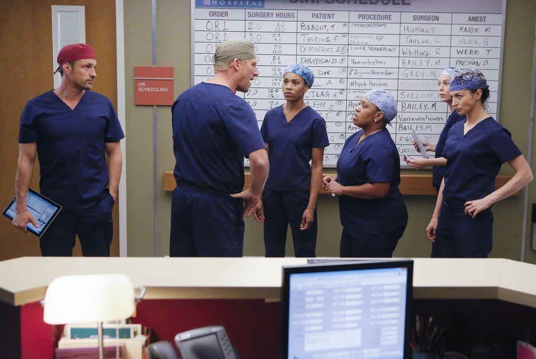 Owen (Kevin McKidd, 2.v.l.) kann nicht verstehen, warum Bailey (Chandra Wilson, 3.v.l.) Dr. Nathan Riggs (Martin Henderson, l.) eingestellt hat, und... - Bildquelle: Vivian Zink ABC Studios