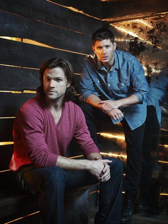 (10. Staffel) - Während Sam (Jared Padalecki, l.) versucht, Dean (Jensen Ackles, r.) aus den Fängen des Teuels zu befreien, machen neue Feinde Jagd... - Bildquelle: 2013 Warner Brothers