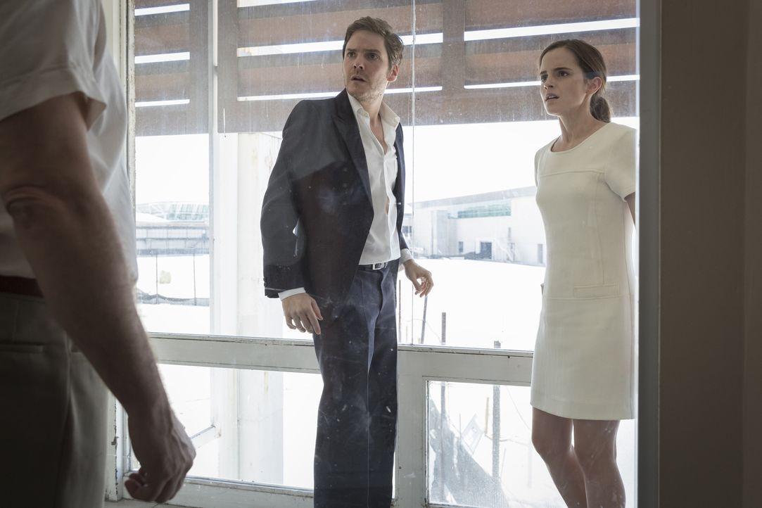 """Als Daniel (Daniel Brühl, l.) und Lena (Emma Watson, r.) ihre Flucht aus der skrupellosen, religiösen Sekte """"Colonia Dignidad"""" planen, erhalten sie... - Bildquelle: Majestic / Ricardo Vaz Palma"""