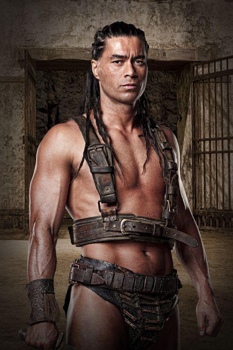 """Barca (Antonio Te Maioha), die """"Bestie von Karthago"""", ist einer der erfolgreichsten Gladiatoren von Batiatu. Er dient als Leibwächter und Mörder f... - Bildquelle: 2009 Starz Entertainment, LLC"""