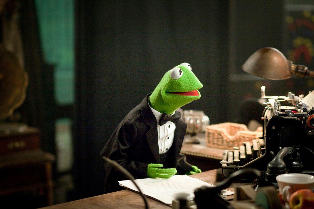 Während der Spendenshow versucht Kermit Ruhe zu bewahren und sämtliche Sabotagen seiner Gegner wieder geradezubiegen. Ob ihm das gelingt, ist ungewi... - Bildquelle: The Muppets Studio, LLC. All rights reserved