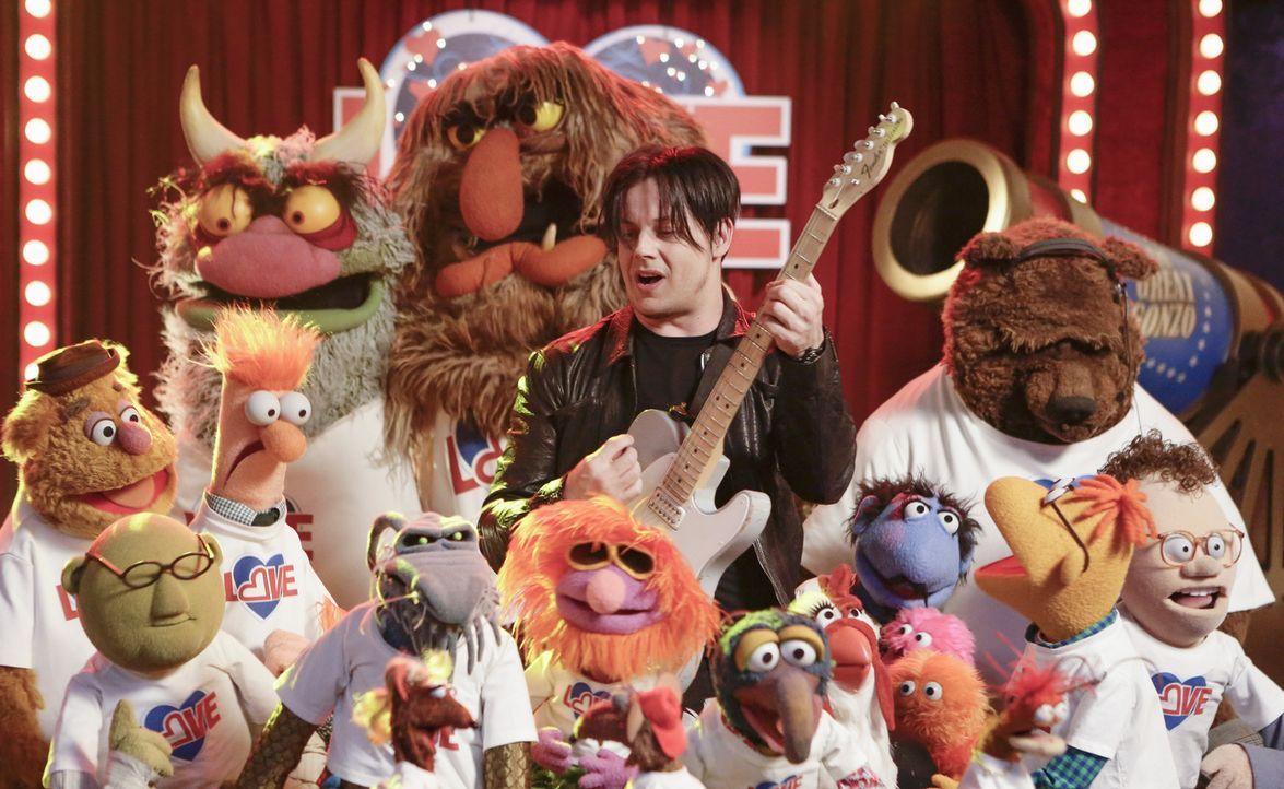 """Geben alles, damit die vorerst letzte Ausgabe von """"Up Late with Miss Piggy"""" ein Erfolg wird und Kermit und Miss Piggy wieder zusammenfinden: die Mup... - Bildquelle: Nicole Wilder ABC Studios"""