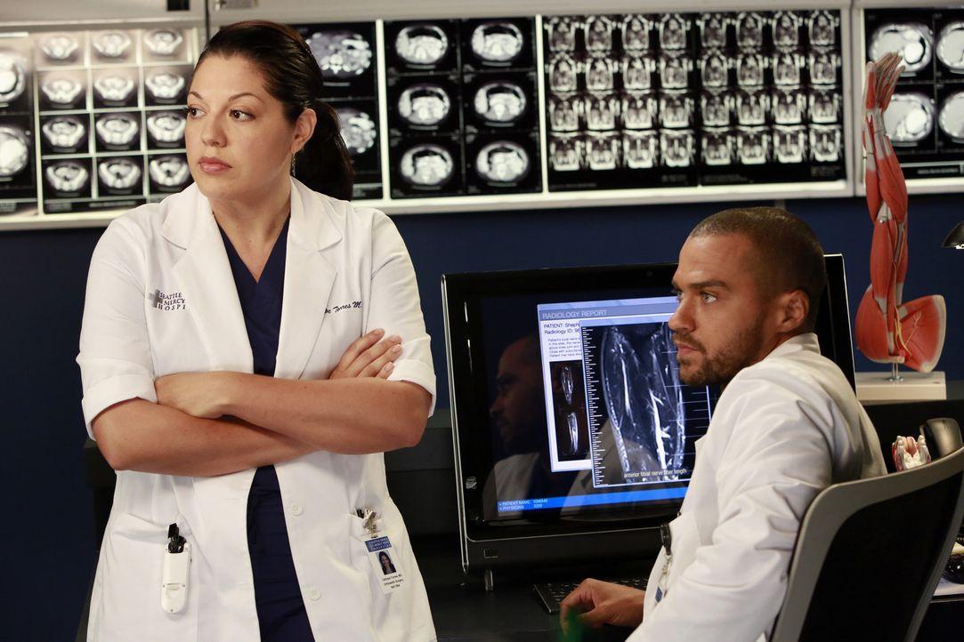 Während Cristina und Owen ihre Ehe endgültig beenden, versuchen Callie (Sara Ramirez, l.) und Jackson (Jesse Williams, r.) Derek zu einer riskante... - Bildquelle: ABC Studios