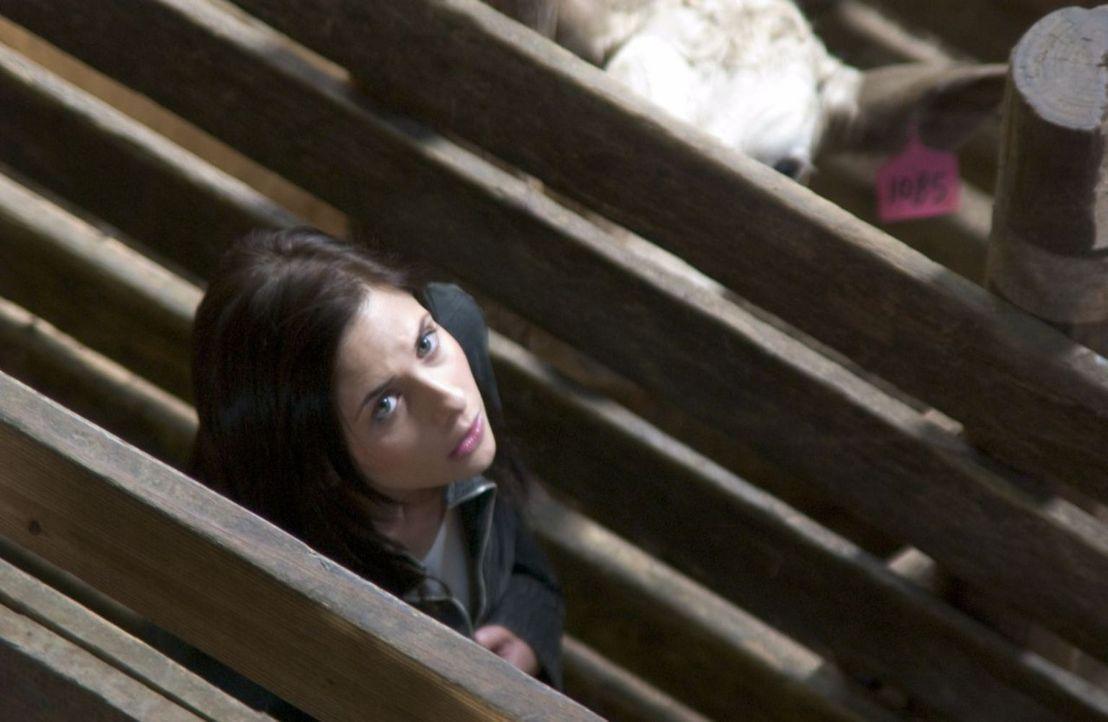 Nacht für Nacht wird Joanna (Sarah Michelle Gellar) in ihren Träumen von einem Mann in schwarzen Stiefeln verfolgt und immer wieder von einer von pa... - Bildquelle: Tobis Film GmbH & Co. KG