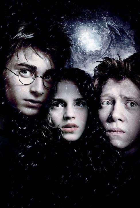 Ein neues Abenteuer wartet auf Harry Potter (Daniel Radcliffe, l.) und seine Freunde Ron (Rupert Grint, r.) und Hermine (Emma Watson, M.) ... - Bildquelle: Warner Television