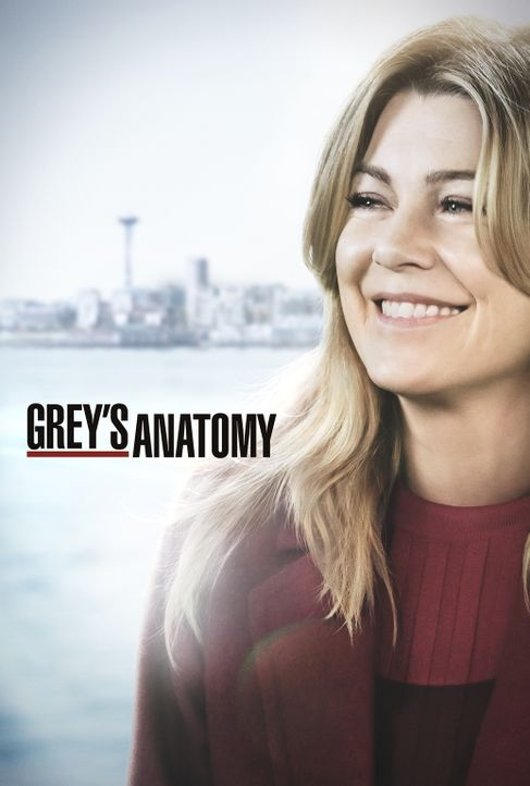 (15. Staffel) - Grey's Anatomy - Artwork - Bildquelle: ABC Studios