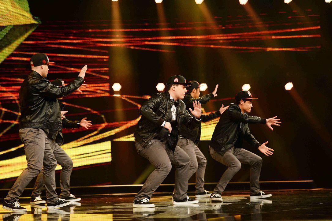 Got-To-Dance-Ginseng-Dance-Crew-01-SAT1-ProSieben-Willi-Weber - Bildquelle: SAT.1/ProSieben/Willi Weber