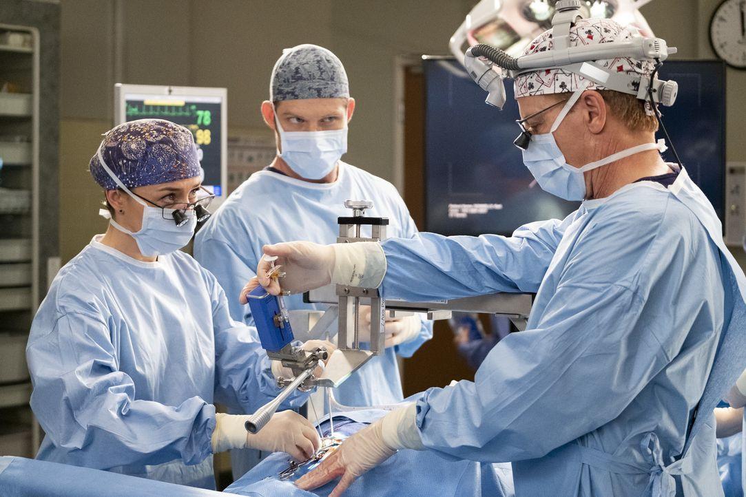(v.l.n.r.) Dr. Amelia Shepherd (Caterina Scorsone); Dr. Atticus Lincoln (Chris Carmack); Dr. Thomas Koracick (Greg Germann) - Bildquelle: Jessica Brooks ABC Studios