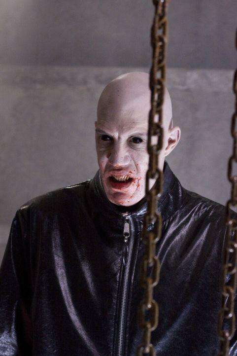 Kennt kein Pardon: Vampir Dane (Ben Cotton) ... - Bildquelle: 2010 Stage 6 Films, Inc. All Rights Reserved.