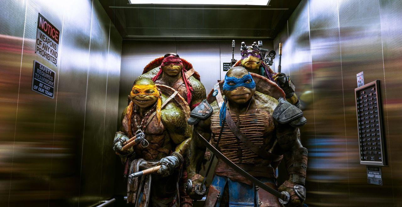 Zusammen mit der Journalistin April stürzen sich Michelangelo (Noel Fisher, vorne l.), Leonardo (Pete Ploszek, vorne r.), Raphael (Alan Ritchson, hi... - Bildquelle: MMXIV Paramount Pictures Corporation. All Rights Reserved.