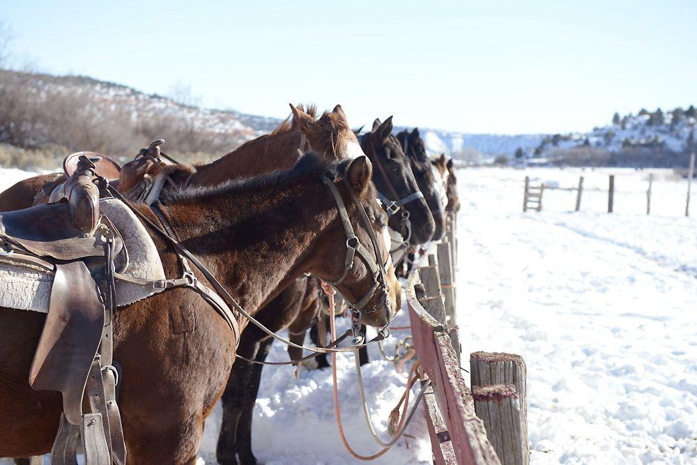 GNTM-Stf09-Epi08-Leben-auf-der-Ranch-05-ProSieben-Oliver-S - Bildquelle: ProSieben/Oliver S.
