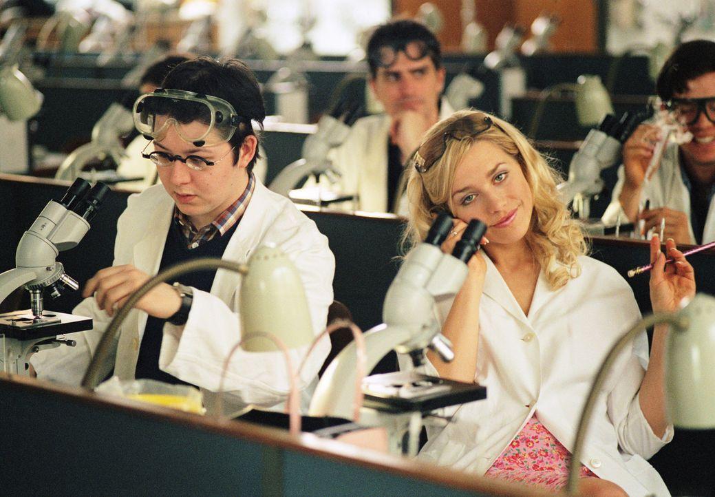 Als die attraktive Pharmaziestudentin Denise (Julia Dietze, r.) eine wichtige Chemieprüfung vermasselt, wird ihr klar, dass sie dringend einen gute... - Bildquelle: Lucia Fuster ProSieben