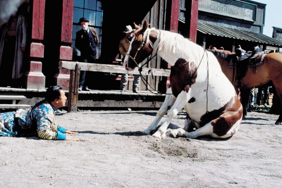 Immer wieder muss sich Chon (Jackie Chan) dem eisernen Willen seines eigenwilligen Pferdes beugen ... - Bildquelle: SPYGLASS ENTERTAINMENT GROUP, LP