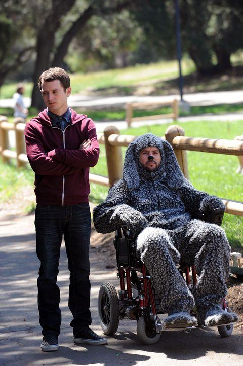 Ryan (Elijah Wood, l.) passt es gar nicht, dass seine Nachbarin immer ihren Hund Wilfred (Jason Gann, r.) mitbringt. Obwohl dieser im Rollstuhl sitz... - Bildquelle: 2011 FX Networks, LLC. All rights reserved.