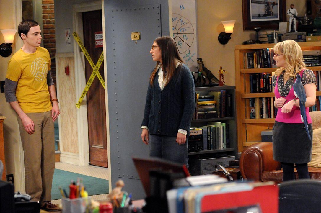 Sheldon (Jim Parsons, l.) versucht vergeblich einen Vogel aus seiner Wohnung zu verscheuchen - bis Amy (Mayim Bialik, M.) und Bernadette (Melissa Ra... - Bildquelle: Warner Bros. Television