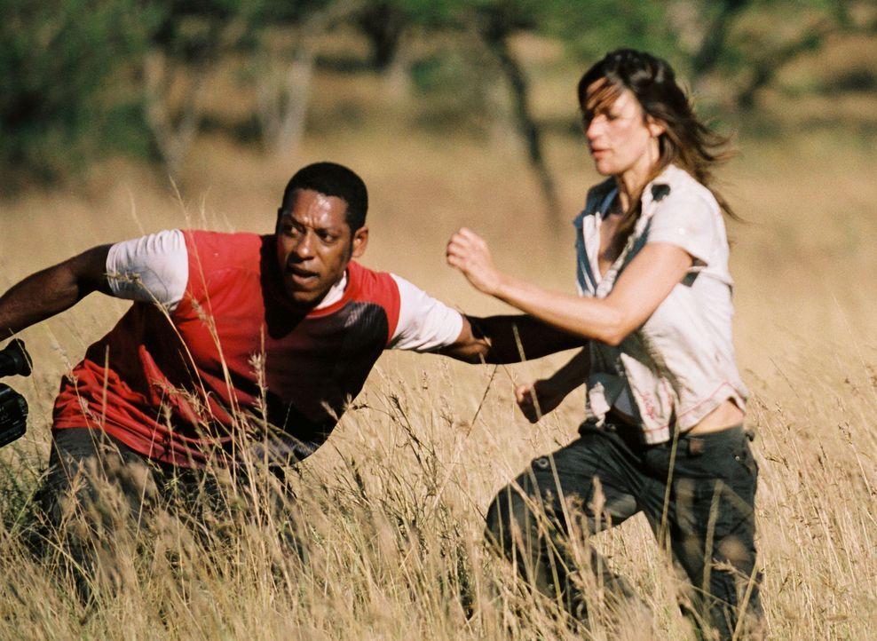 Für Aviva (Brooke Langton, r.) und Kameramann Steven (Orlando Jones, l.) beginnt ein mörderischer Kampf ums Überleben ... - Bildquelle: Hollywood Pictures Company.  All rights reserved
