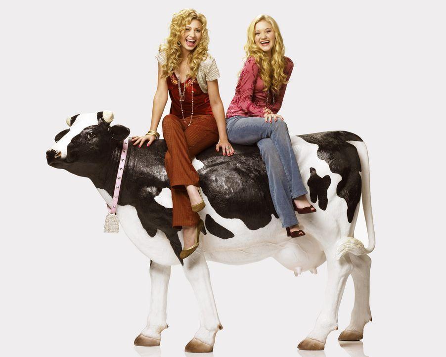 Sie sind jung, blond, reich, verwöhnt und Papas kleine Mädchen: Partygirls (Alyson Michalka, l. und Amanda Michalka, r.) auf Mission ... - Bildquelle: Buena Vista International Television