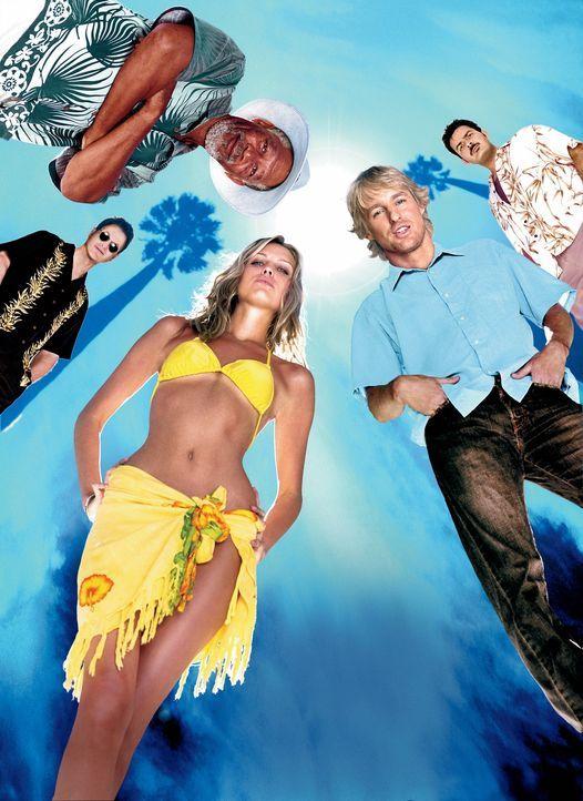 Hawaii Crime Story - Bildquelle: Warner Bros.