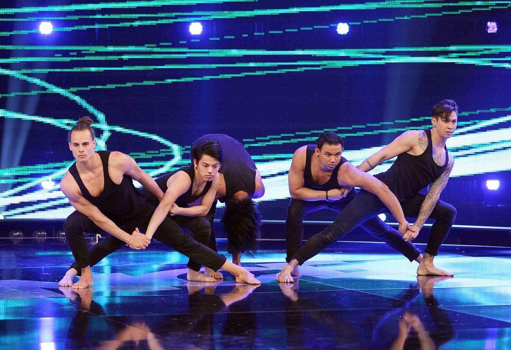 Got-To-Dance-Contrast-05-SAT1-ProSieben-Guido-Engels - Bildquelle: SAT.1/ProSieben/Guido Engels