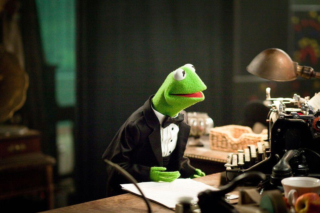 muppets-15-disney-enterprises-incjpg 1900 x 1267 - Bildquelle: Disney Enterprises Inc.