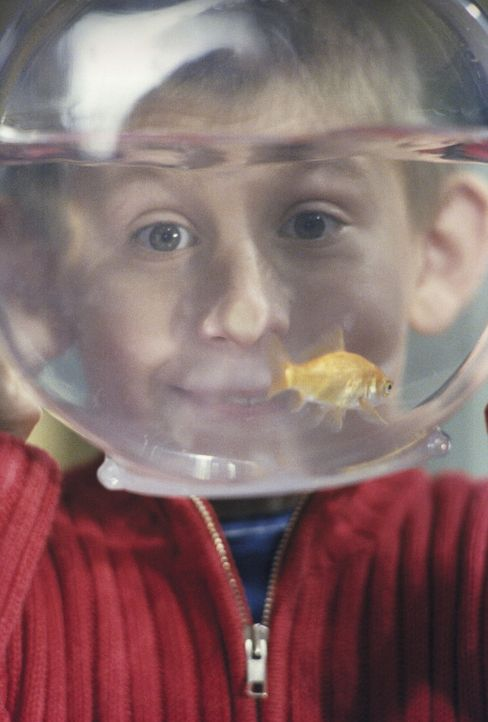 Dewey (Erik Per Sullivan) freut sich darüber, dass sein Goldfisch immer noch munter im Kreis schwimmt ... - Bildquelle: TM +   Twentieth Century Fox Film Corporation. All Rights Reserved.