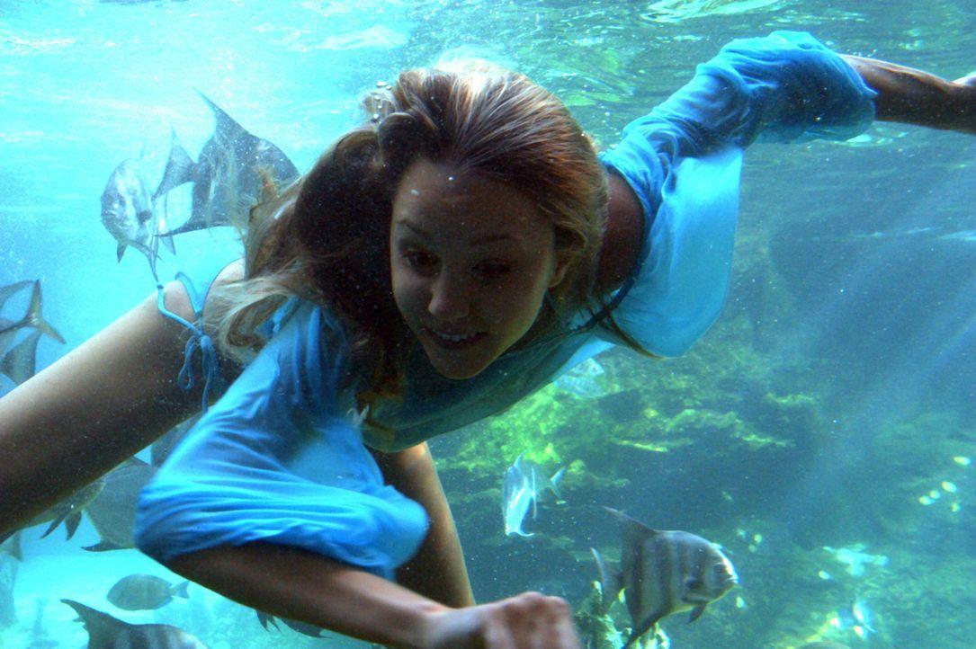 Seitdem sie sich erinnern kann, ist Jenny (Amanda Bynes) der größte Fan von Rockidol Jason Masters. Als sie beide eine Kreuzfahrt machen, kommt es z... - Bildquelle: Media 8 Entertainment