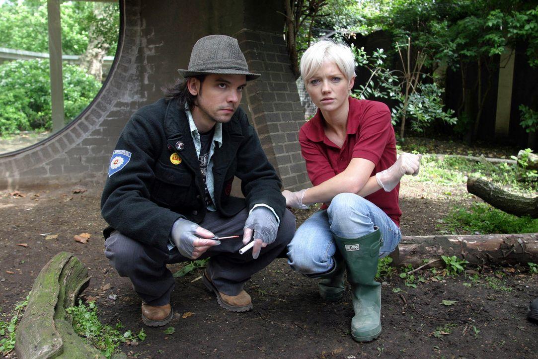 Abby (Hannah Spearritt, r.) und Connor (Andrew Lee Potts, l.) suchen nach Hinweisen ... - Bildquelle: ITV Plc