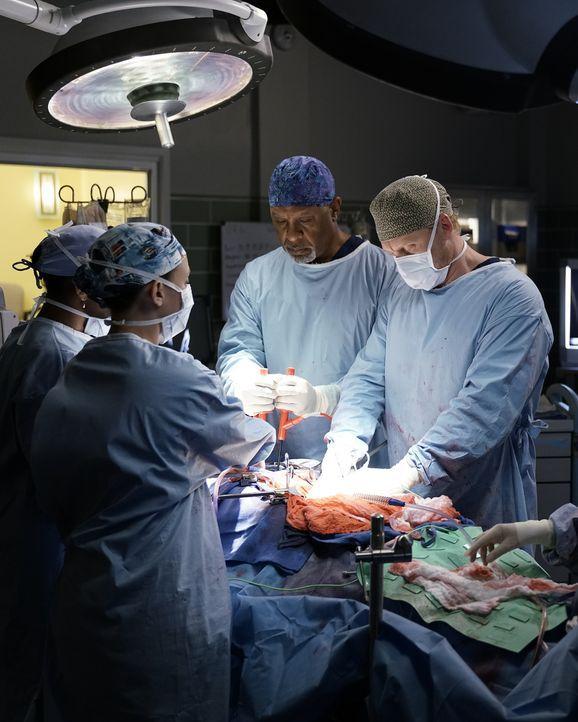 Kümmern sich um einen Mann, der massive innere Verletzungen und Organschäden hat: Stephanie (Jerrika Hinton, l.), Meredith (Ellen Pompeo, 2.v.l.), O... - Bildquelle: Michael Desmond 2016 American Broadcasting Companies, Inc. All rights reserved.