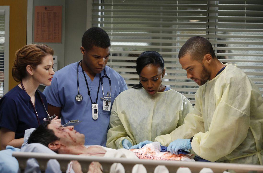 April (Sarah Drew, l.), Shane (Gaius Charles, 2.v.l.), Stephanie (Jerrika Hinton, 2.v.r.) und Jackson (Jesse Williams, r.) kümmern sich um Stuart L... - Bildquelle: ABC Studios