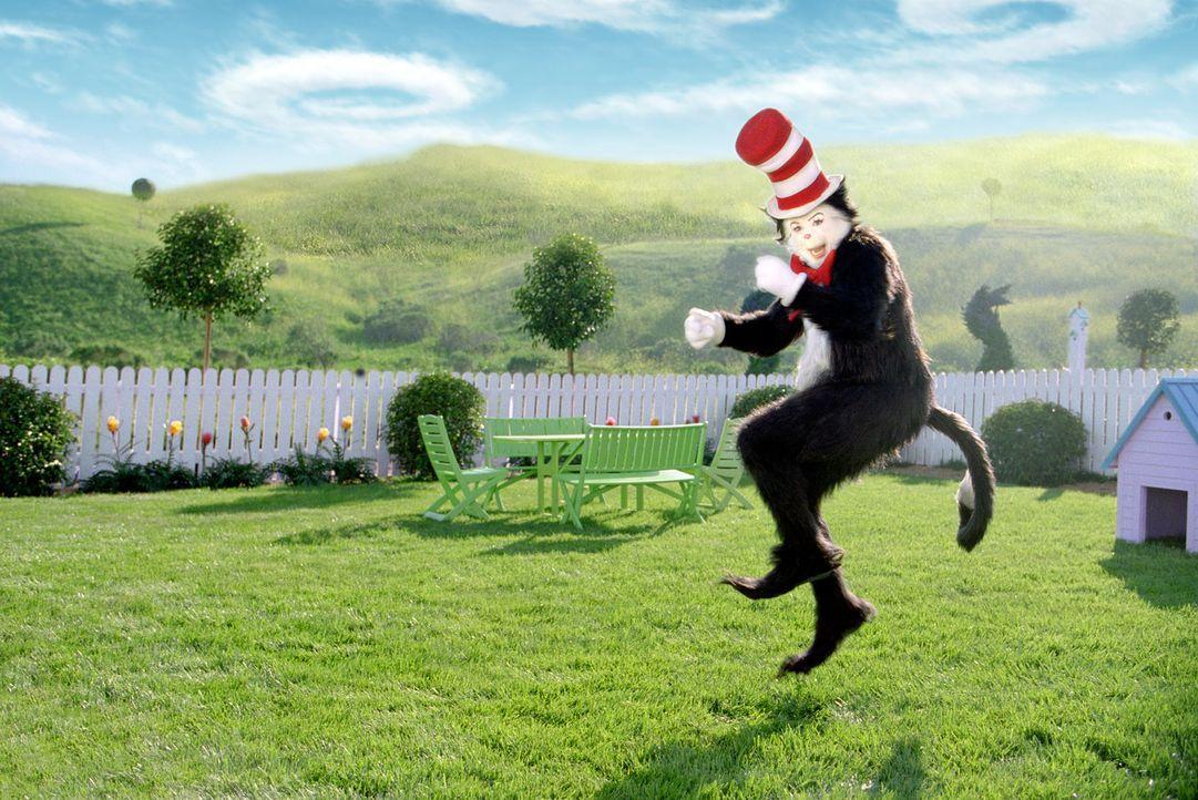 Eines Tages tritt ins Leben der Familie Walden ein sprechender, fast zwei Meter großer Kater (Mike Myers), der nur eines verspricht: Spaß! - Bildquelle: TM &   2003 DreamWorks LLC. All Rights Reserved.