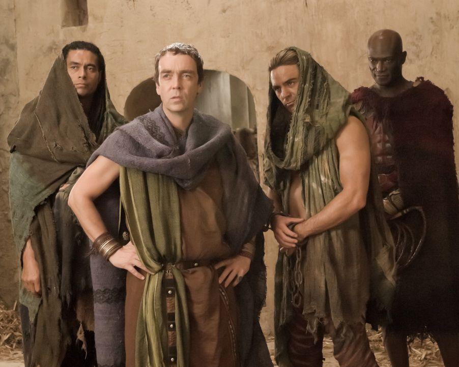 Für all das, was er ihm angetan hat, möchte sich Batiatus (John Hannah, 2.v.l.) mit Hilfe seiner Sklaven Gannicus (Dustin Clare, 2.v.r.), Barca (A... - Bildquelle: 2010 Starz Entertainment, LLC