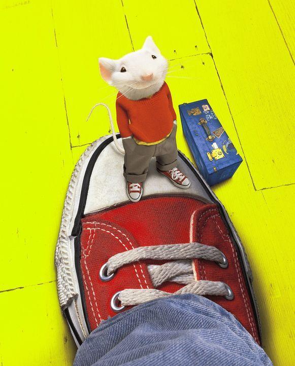 Die putzige kleine Maus Stuart wird von der Familie Little adoptiert und darf mit ihnen in ihr neues Heim umziehen ... - Bildquelle: Columbia TriStar Film