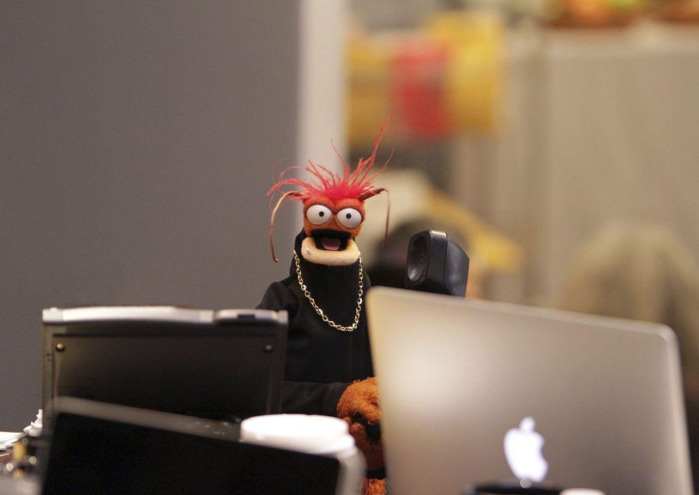 Hofft, dass Miss Piggy bald wieder bessere Laune hat: Pepe ... - Bildquelle: Andrea McCallin ABC Studios