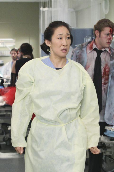 Immer im Einsatz um Leben zu retten: Cristina (Sandra Oh) ... - Bildquelle: ABC Studios