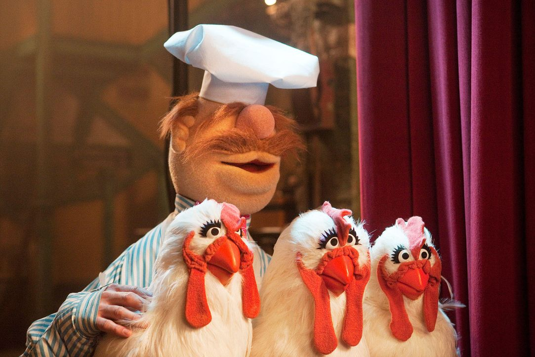 muppets-23-disney-enterprises-incjpg 1900 x 1267 - Bildquelle: Disney Enterprises Inc.