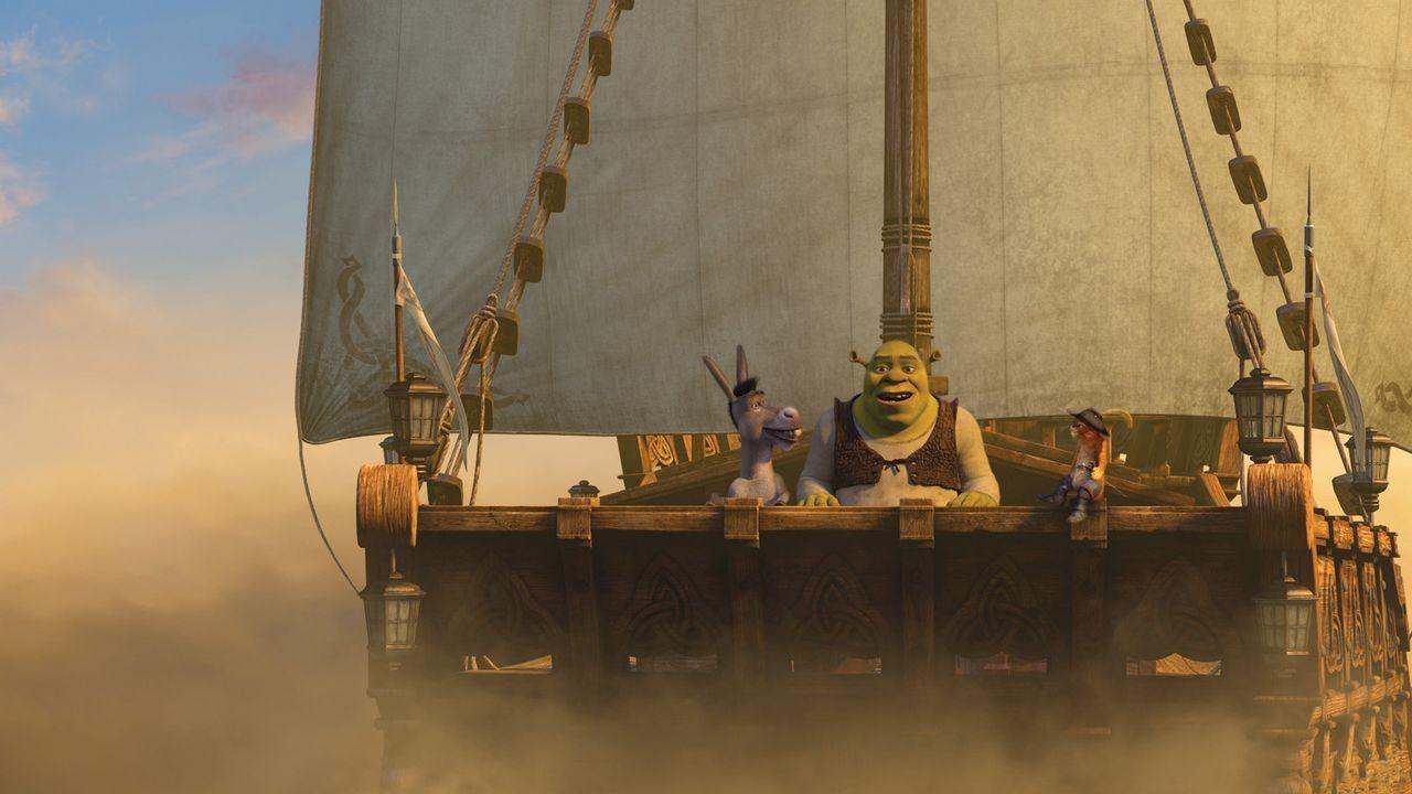 Auf eine lange Reise begeben sich Shrek und seine Freunde, weil das grüne Sumpfmonster partout nicht König werden will, und deshalb einen passende... - Bildquelle: TM &   2007 Dreamworks Animation LLC