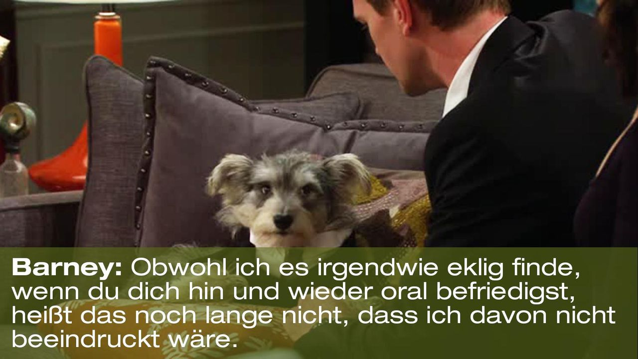 how-i-met-your-mother-zitat-quote-staffel-8-episode-5-durchtriebene-hunde-8-barney-foxpng 1600 x 900 - Bildquelle: 20th Century Fox