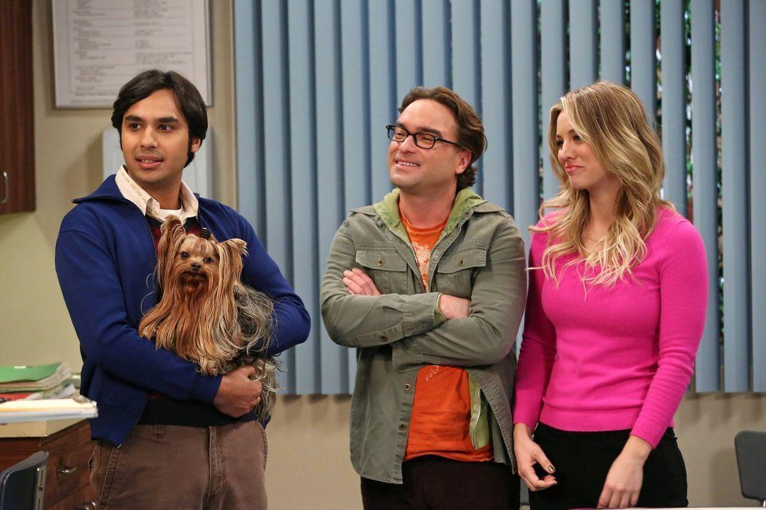 Leonard (Johnny Galecki, M.) und Penny (Kaley Cuoco, r.) kümmern sich um Rajs (Kunal Nayyar, l.) Hund. Doch sie entpuppen sich als nachlässige Tiers... - Bildquelle: Warner Brothers