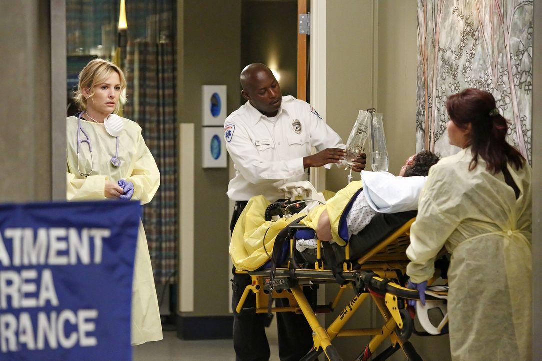 In einer großen Shopping Mall gab es eine Explosion. Arizona (Jessica Capshaw, l.) und ihre Kollegen geben alles, um die Verletzten zu retten ... - Bildquelle: Kelsey McNeal 2014 American Broadcasting Companies, Inc. All rights reserved.