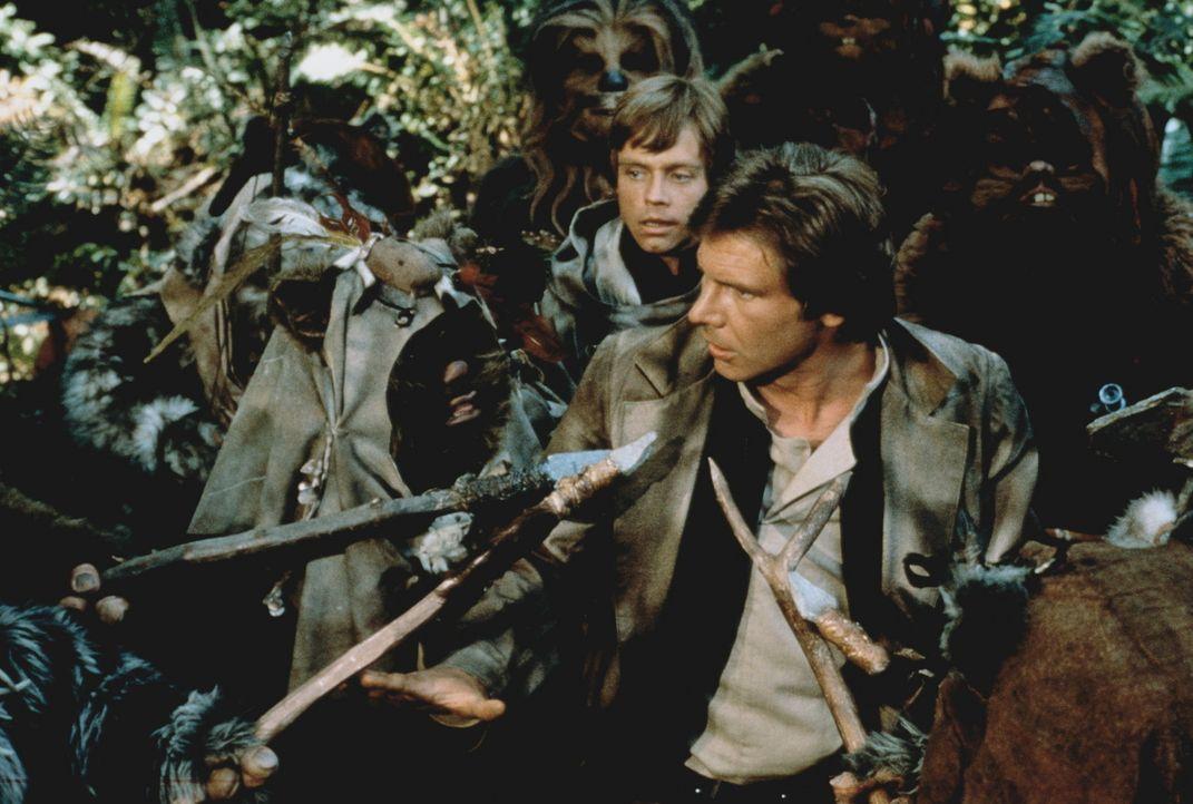 Die kleinen Ewoks nehmen Han Solo (Harrison Ford, vorne M.) und Luke Skywalker (Mark Hamill, hinten M.) gefangen. Doch schnell erkennen sie, dass di... - Bildquelle: Lucasfilm LTD. & TM. All Rights Reserved.
