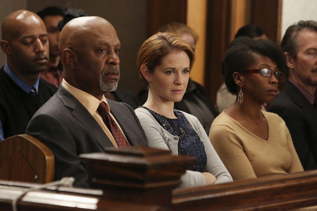 Mit Argusaugen begutachten Dr. Webber (James Pickens Jr. l.) und April (Sarah Drew, M.) den Verlauf der Gerichtsverhandlung. Hat Callie eine Chance,... - Bildquelle: ABC Studios