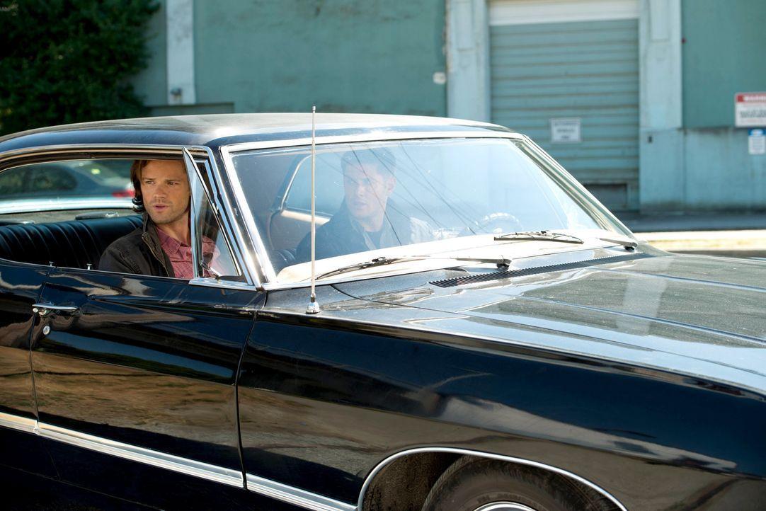 Wie lange kann Dean (Jensen Ackles, r.) vor Sam (Jared Padalecki, l.) noch geheim halten, dass ein Engel in ihm wohnt? - Bildquelle: 2013 Warner Brothers