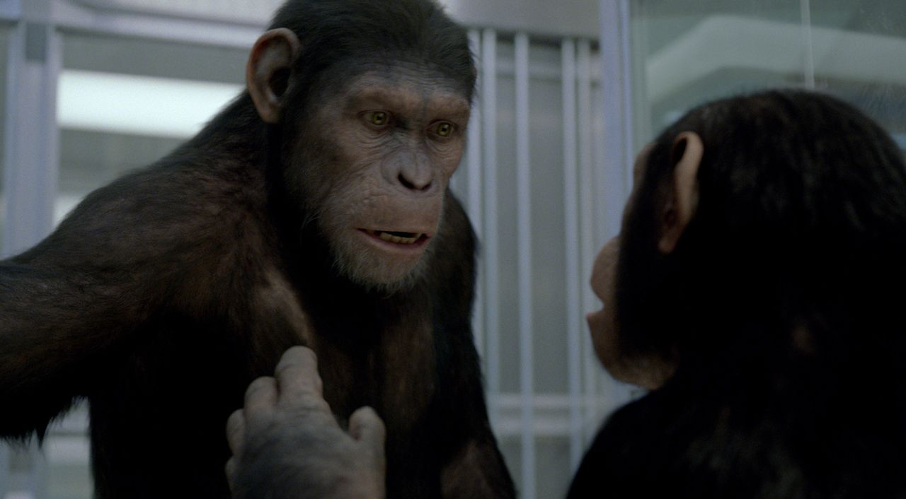 Die Genexperimente haben Caesars (l.) Intelligenz ins Unermessliche steigen lassen. Kaum zwangseingewiesen in das heruntergekommene Tierheim beginnt... - Bildquelle: 2011 Twentieth Century Fox Film Corporation. All rights reserved.