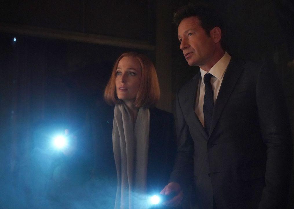 Als sie die Räumlichkeiten eines Kults betreten, geraten Scully (Gillian Anderson, l.) und Mulder (David Duchovny, r.) in Lebensgefahr ... - Bildquelle: Shane Harvey 2018 Fox and its related entities.  All rights reserved.