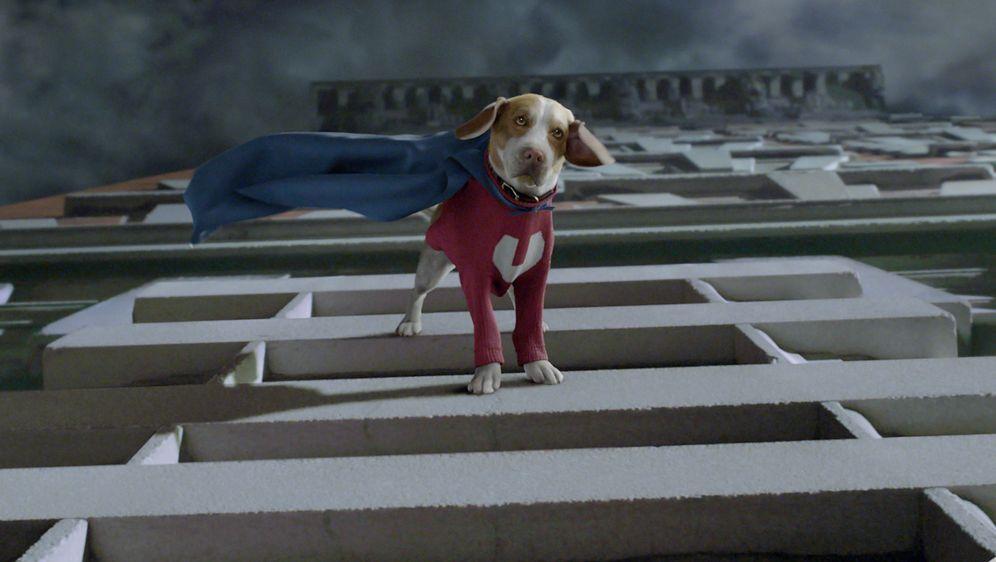 Underdog - Unbesiegt weil er fliegt - Bildquelle: Walt Disney Pictures.  All rights reserved