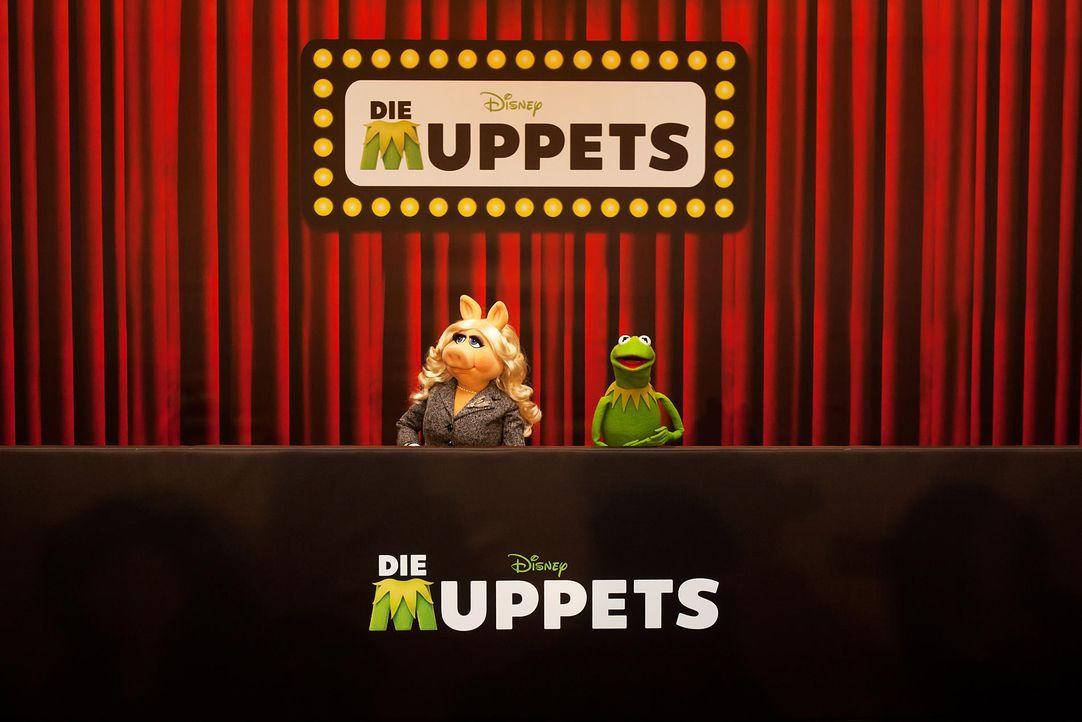 muppets-fotocall-berlin-02-hanna-boussouar-walt-disney-companyjpg 1900 x 1268 - Bildquelle: Hanna Boussouar/Walt Disney Company
