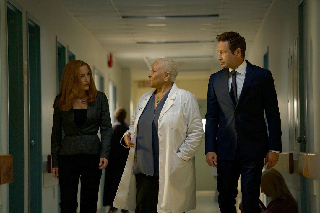 Als in einer Stadt mehrere Menschen durch angebliche Doppelgänger ermordet werden, nehmen Scully (Gillian Anderson, l.) und Mulder (David Duchovny,... - Bildquelle: Shane Harvey 2017 Fox and its related entities.  All rights reserved.